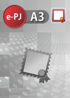 Certificado Digital para Pessoa Jurídica A3 (e-PJ A3)
